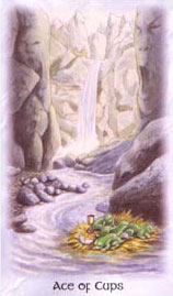 The Celtic Dragon Tarot - Ace of Cups